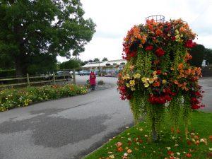 Gargrave garden centre