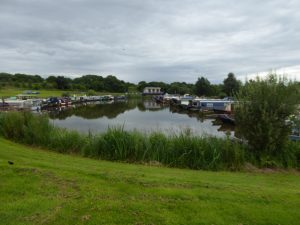 Reedley Marina 1