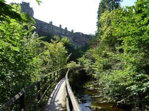 Woodland walk springs canal Skipton castle